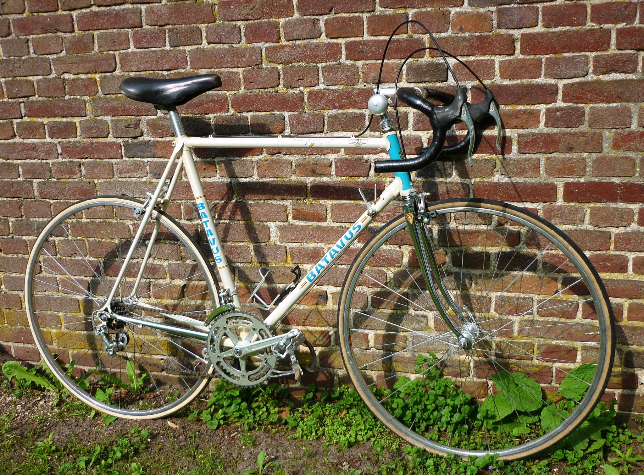 For Sale Dutch 1981 Batavus Professional Bike Campagnolo G S